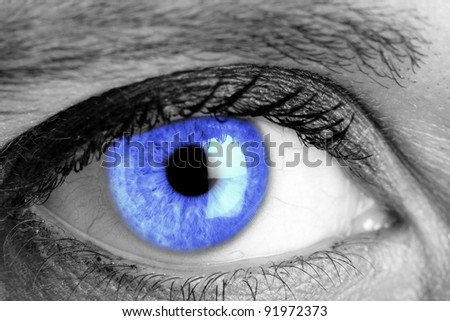 Blue eye macro shooting - stock photo