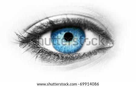 Blue eye macro shot - stock photo