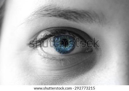 Blue eye woman macro shot  - stock photo