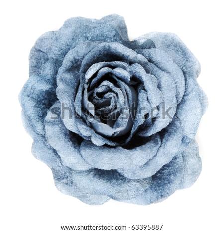 Blue fabrics rose insulated on white background - stock photo