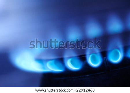 Blue flame of gas on a cooker - stock photo