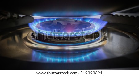 Blue Flame Of Natural Gas On A Cooker Stove