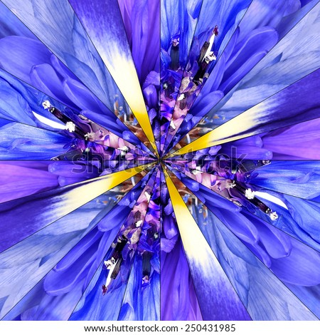 Blue Flower Center Symmetric Collage Made of Collection of Various Wildflowers. Pieces are Divided into Symmetric pieces. - stock photo