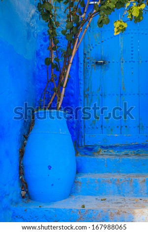 Blue flower pot located in front of blue door - stock photo