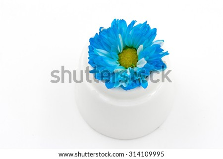 Blue flowers in a white vase.