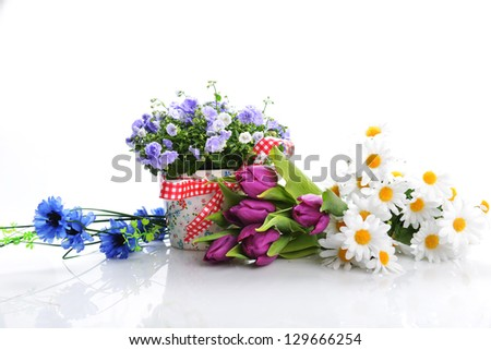 blue flowers in  flower pot and other flowers