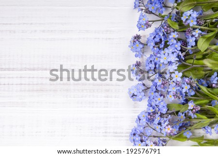 blue flowers on white wooden background - stock photo