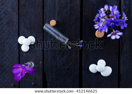 Blue flowers on wooden background. Hepatica, marbles, and little bottle and crocus on vintage wood bacground