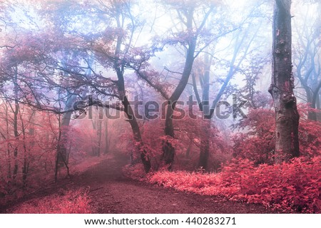Blue fog and red leaves in dreamlike forest - stock photo