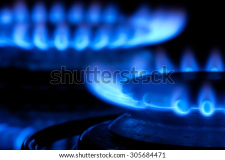 Blue Gas Stove Flames of multiple hobs, dark background