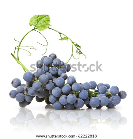 blue grape with green leaf isolated on white - stock photo