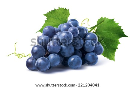 Blue grapes dry bunch isolated on white background as package design element - stock photo
