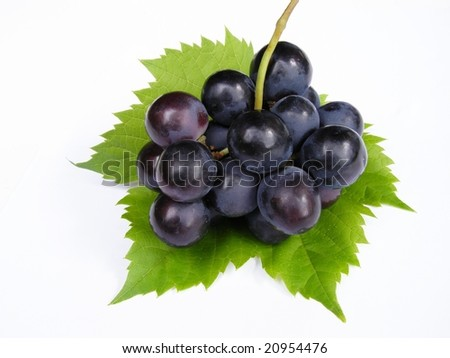 Blue grapes on green leaf against white background