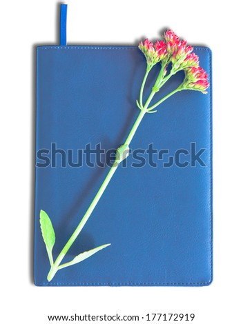blue hardcover book isolated on white background - stock photo