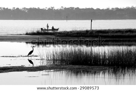 Blue heron fishing in bay with fishermen in distance - stock photo
