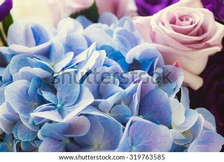 Blue Hydrangea and purple rose - stock photo