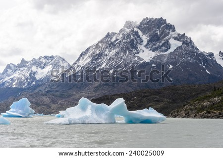 Blue icebergs at Grey Glacier in Torres del Paine National Park, Patagonia, Chile