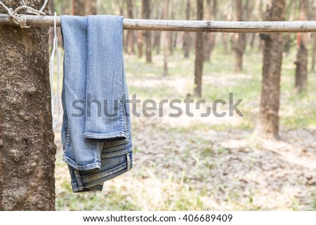 Blue jeans hang on bamboo in forest - stock photo