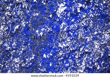 blue lichen background