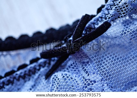 Blue lingerie and bra. - stock photo