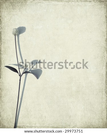 blue long stem and seed head on grunge background 1 - stock photo