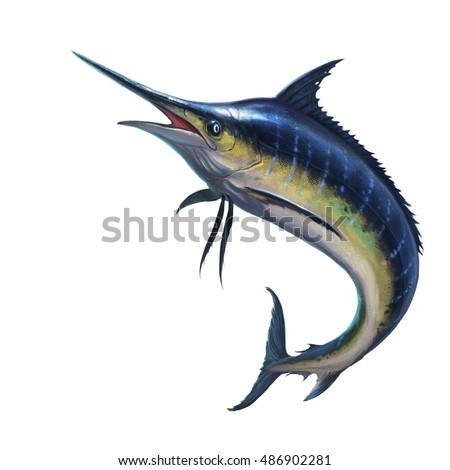 how to cook blue marlin fish