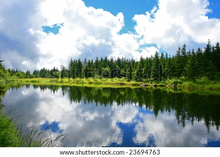 blue mountain lake with  coniferous forest - stock photo