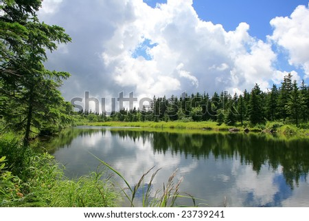 blue mountain lake with coniferous forest