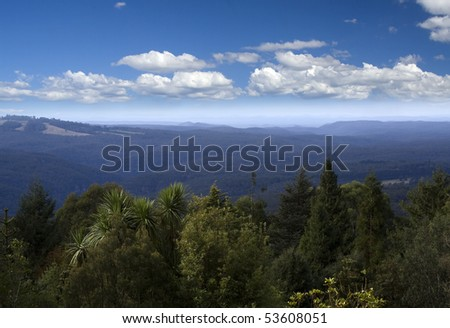 Blue mountains Mount tomah botanic garden view eucalyptus trees cloudy skyline over hils evergreen foliage forest and valley - stock photo