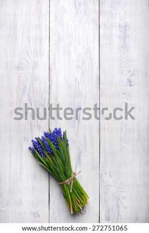 blue Muscari spring flowers bouquet on wooden table. Top view, copy space. - stock photo