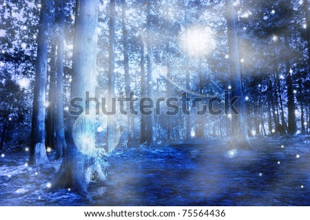 Blue mystic forest - stock photo