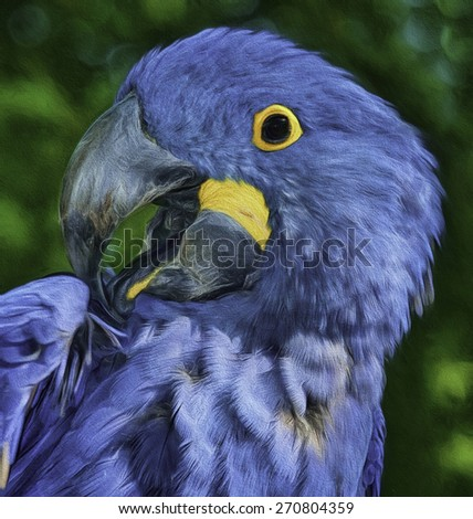 Blue Parrot - stock photo