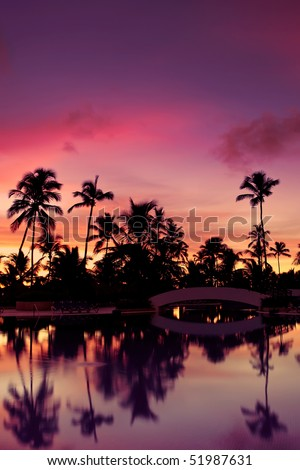 Blue pink and red sunset over sea beach with palms Dominican republic