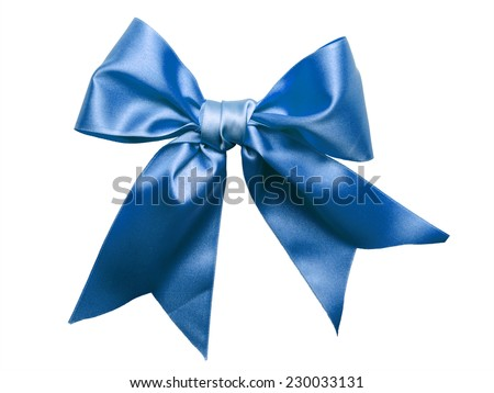Blue Ribbon Bow isolated on White Background