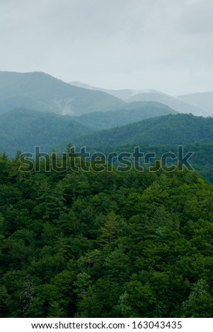 Blue Ridges (Great Smoky Mountains National Park) - stock photo