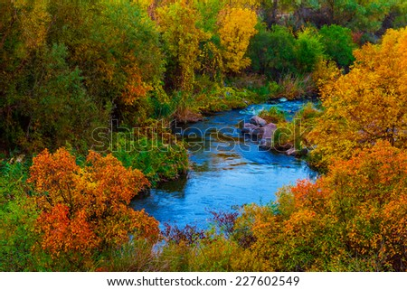 blue river in a autumn forest - stock photo