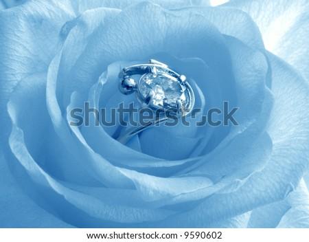 Blue rose with diamond platinum ring - stock photo
