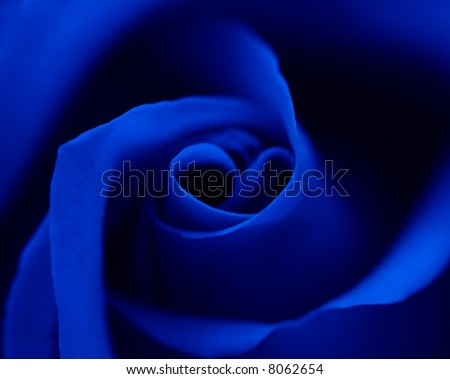 Blue Rose Heart Symbol Center Look Stock Photo Edit Now 8062654