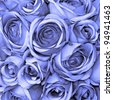 blue roses   pattern - stock photo