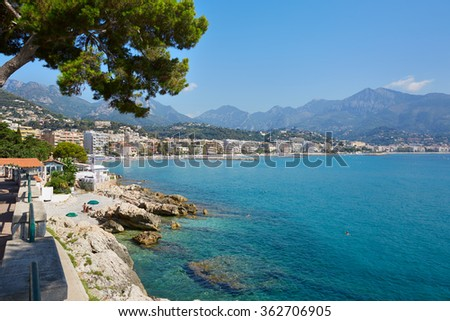 Blue sea and sky of the French riviera coast  with maritime pine in summer, Cap Martin