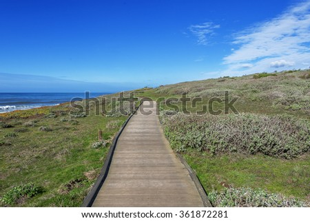 Blue sea & sky by yourself, sunshine, walking, running, hiking, and biking trails near the beach, at the Fiscalini Ranch Preserve on the Big Sur coast, California Central Coast, near Cambria CA. - stock photo
