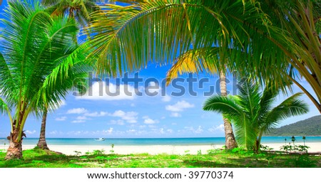 Blue sea water under palm tree frame and sky background - summer nature - stock photo
