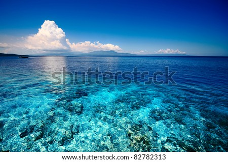 Blue shallow sea with coral reef and fluffy clouds on the horizon