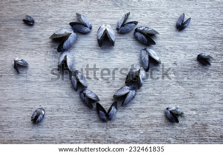Blue shells arranged in heart form on old gray plywood - stock photo