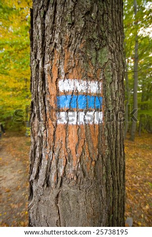 Blue sing for hiking tourism in the wood - stock photo