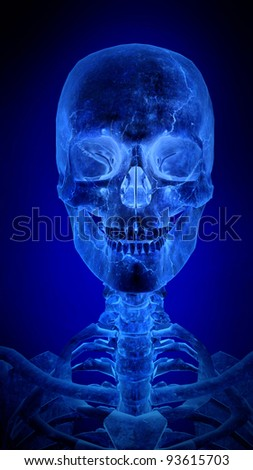 Blue  skull - Abstract blue digital background with high detail
