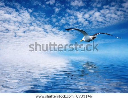 Blue sky and flaying seagull - stock photo