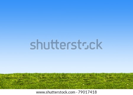 blue sky and grass background - stock photo