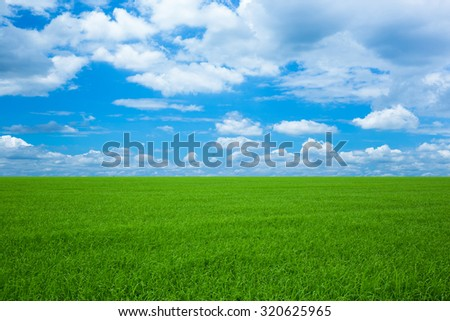 Blue Sky and Green Field Landscape - stock photo