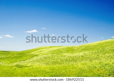 blue sky and green grass - stock photo